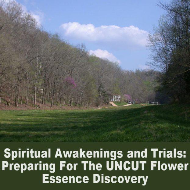 spiritual awakenings and trials 2