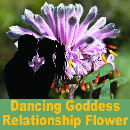 Dancing Goddess relationship flower