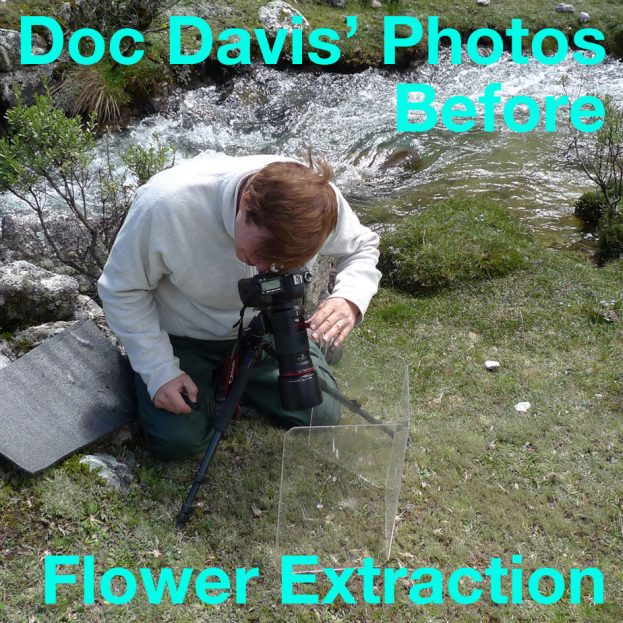 doc Davis photos before extraction
