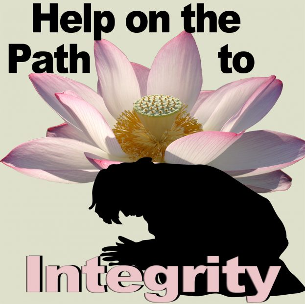 help on path to integrity