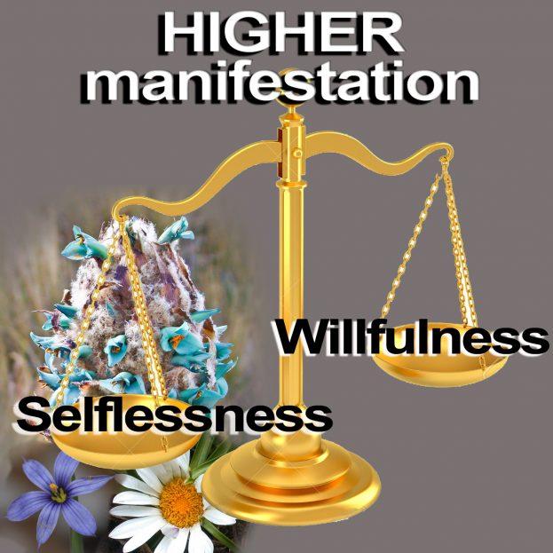 higher manifestation